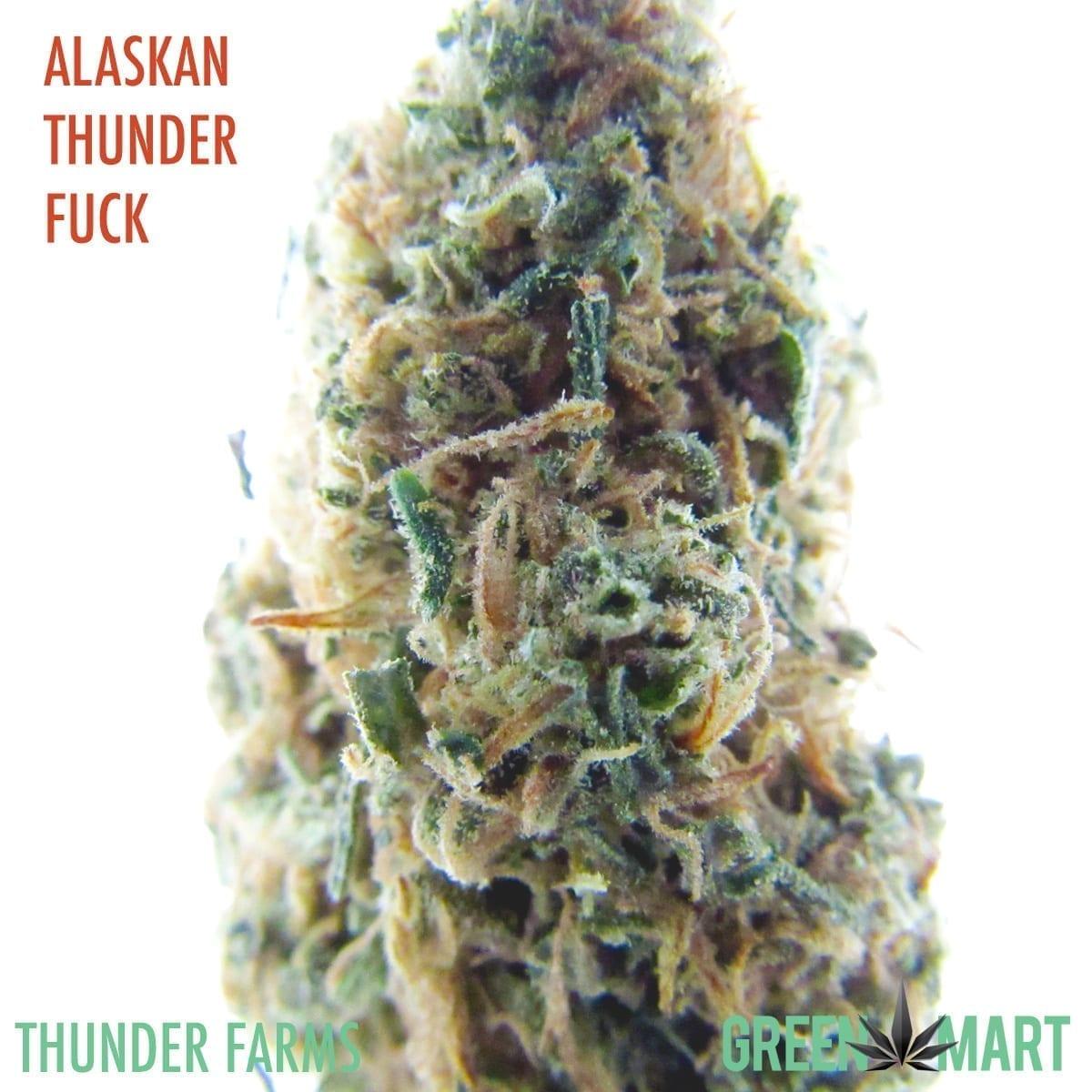 Alaskan Thunderfuck by Thunder Farms