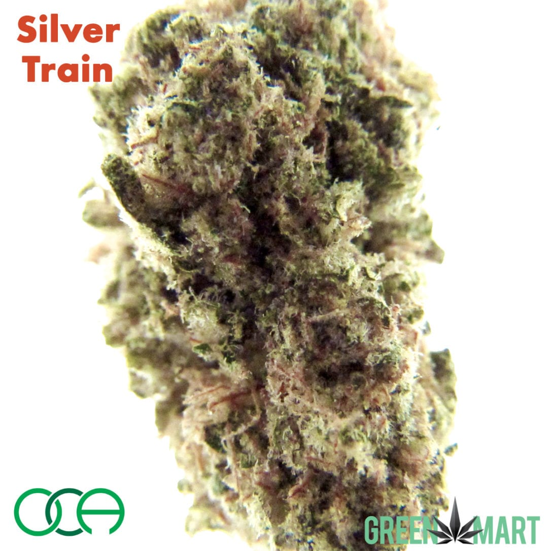 Oregon Cannabis Authority - Silver Train