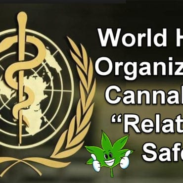 "World Health Organization: Cannabis Is ""Relatively Safe"" WHO Slams USA For Having a Schedule 1 Listing"