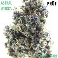 ASTRALWORKS by Pruf Cultivar