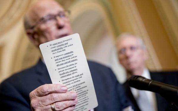 Senate Passes Farm Bill That Legalizes Hemp