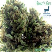 East Fork Cultivars Ringo's Gift