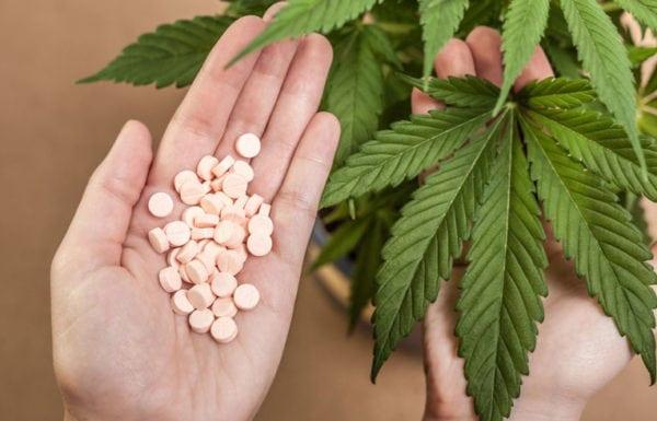 DEA Wants More Marijuana Grown And Fewer Opioids
