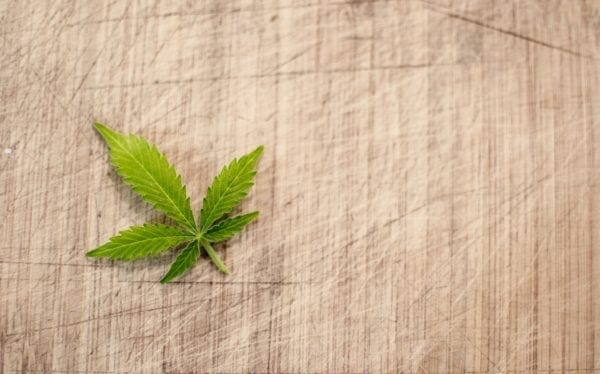 Federal Court Rules In Favor Of Worker Rejected For Medical Marijuana Use