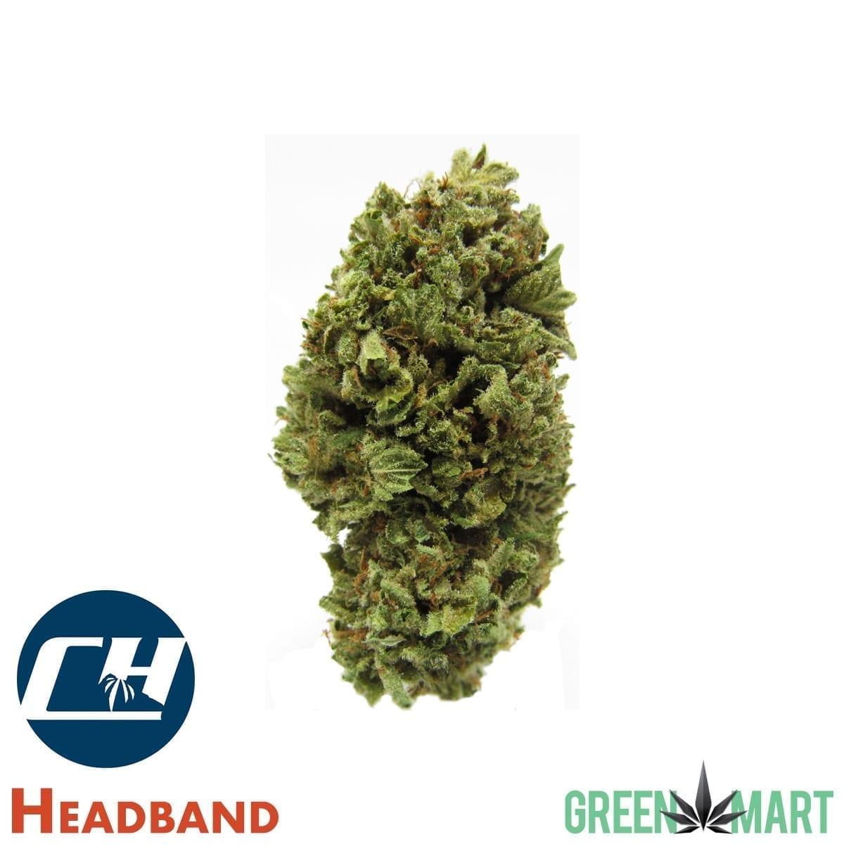 Headband by Cascade High