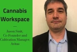 How Avitas' Jason Smit Works: Cannabis Workspace