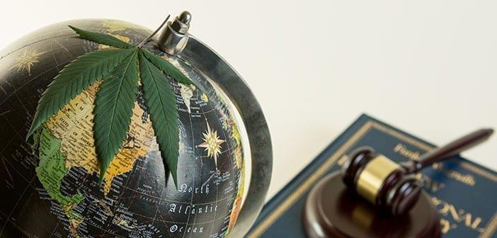 Globe with cannabis leaf