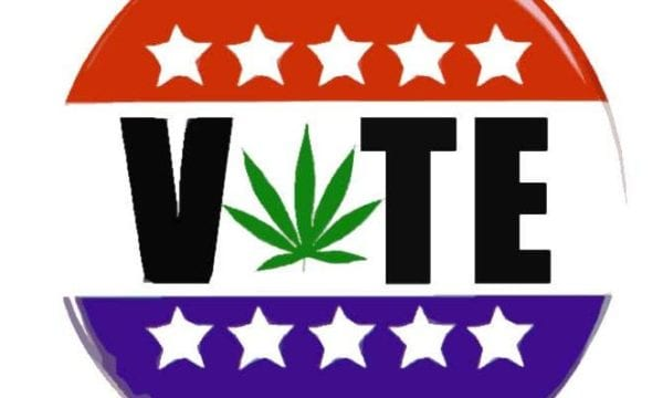 Voters In Seven States Will See These Marijuana Questions On Election Day