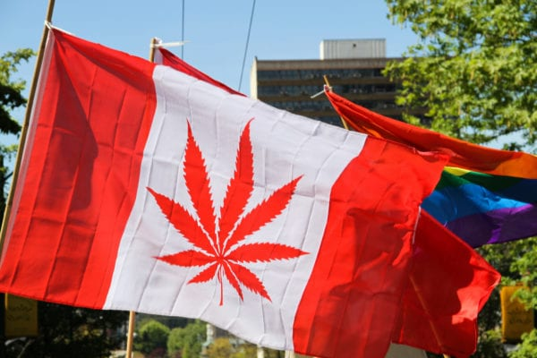 Canadian Pot Leaf Flag