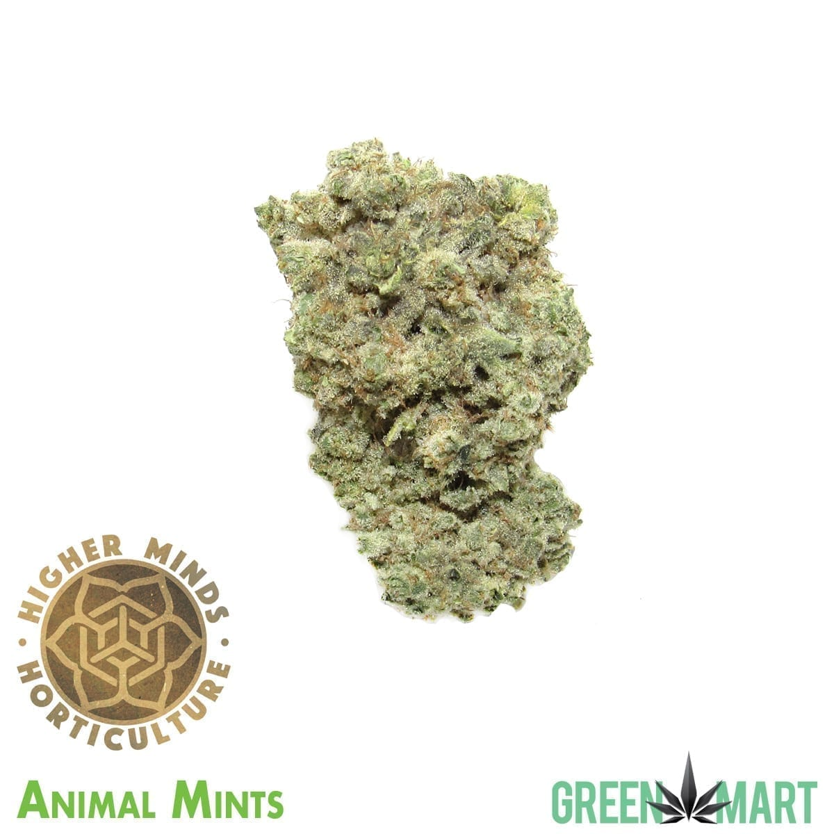 Animal Mints by Higher Minds Horticulture