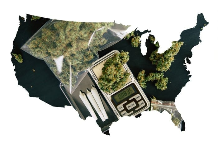 US Import/Export Cannabis