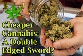 Cheaper Cannabis: A Double Edged Sword?