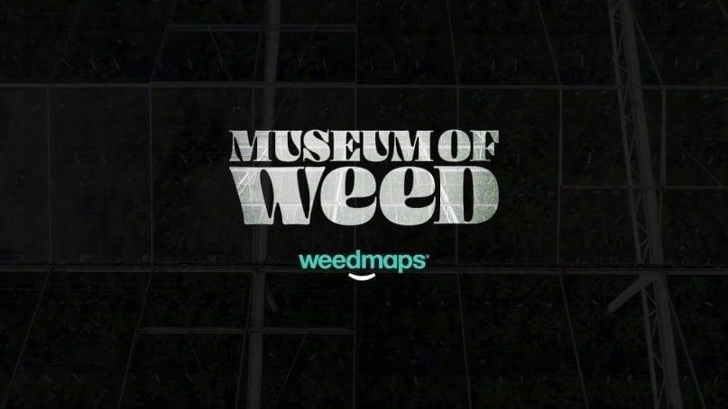 Weedmaps Museum of Weed