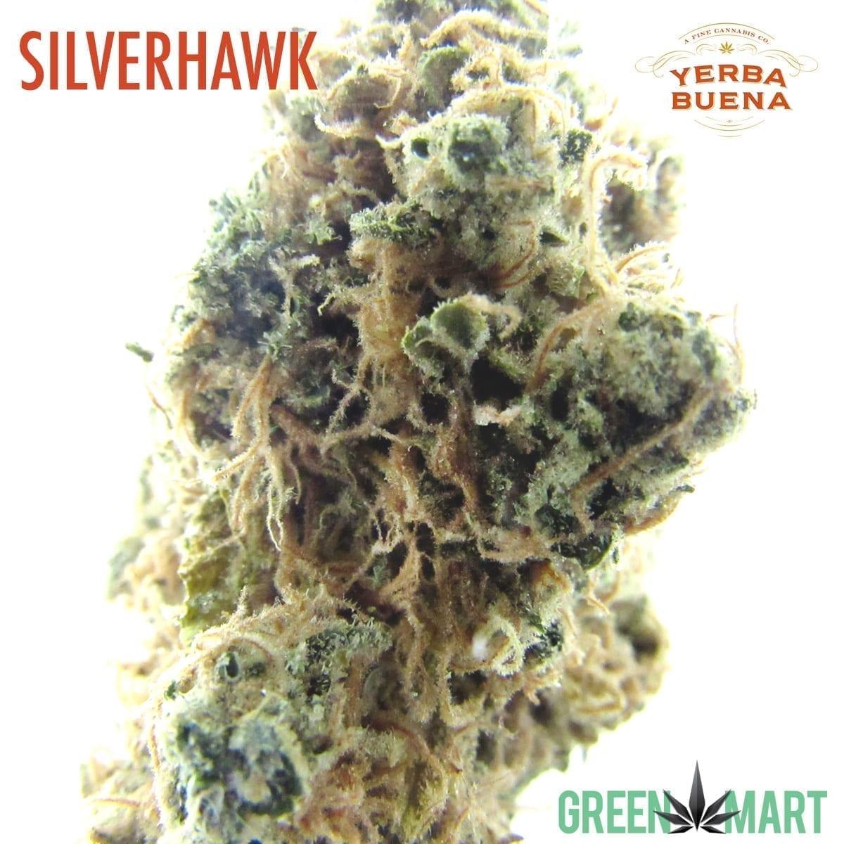 Silver Hawk by Yerba Buena