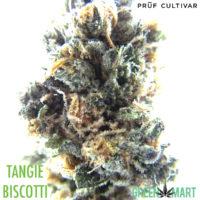 Tangie Biscotti by Pruf Cultivar