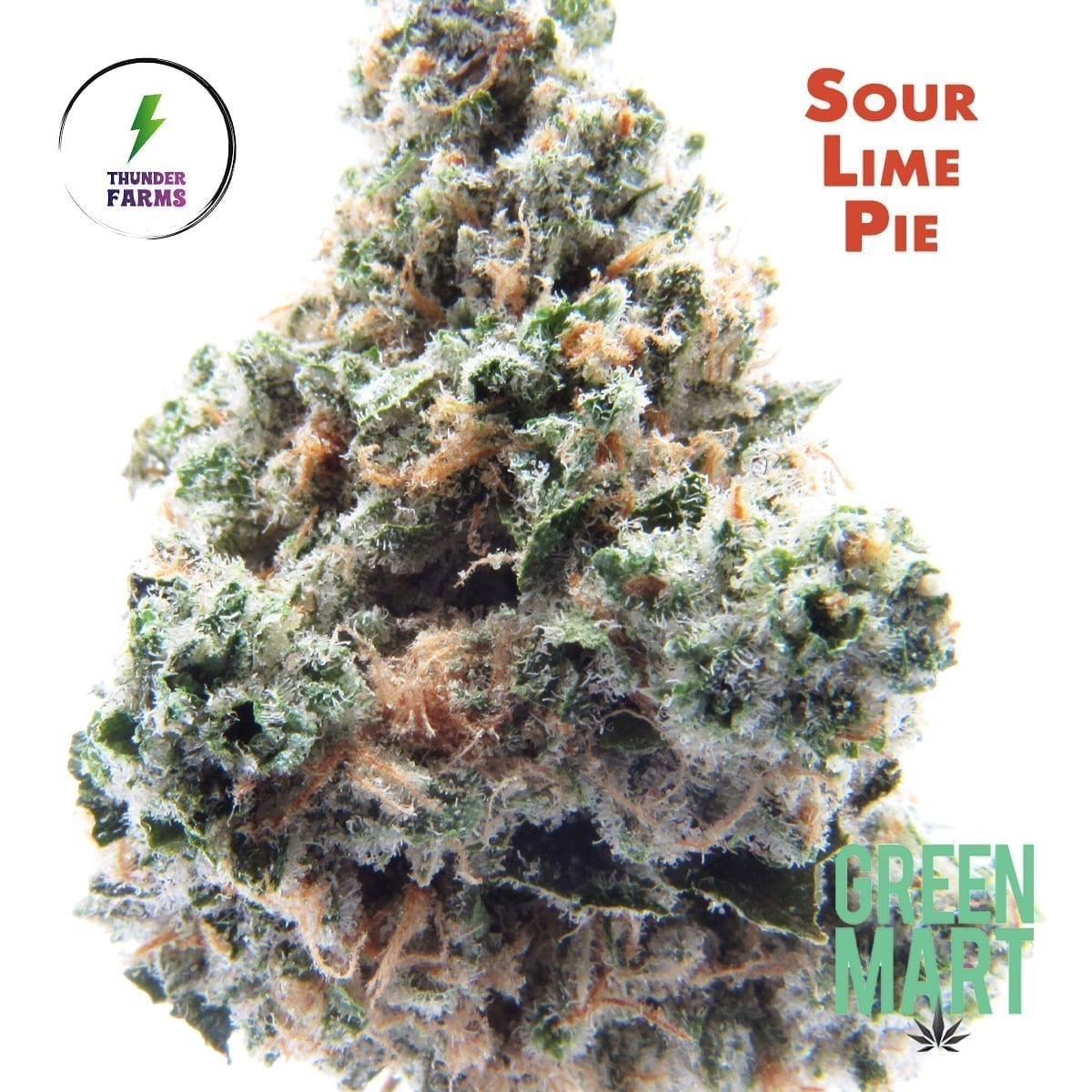 Sour Lime Pie by Thunder Farms December