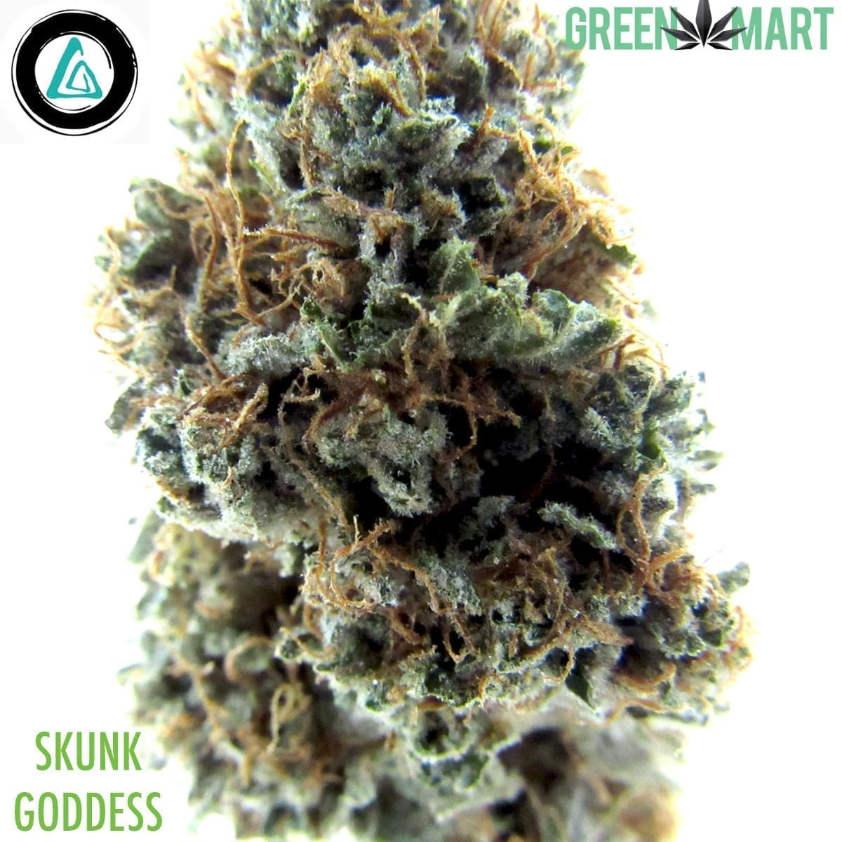 Skunk Goddess by Alibi Cannabis