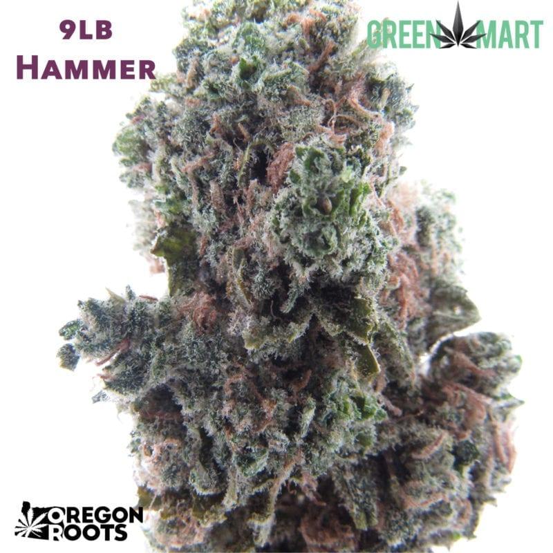 9lb Hammer - Oregon Roots