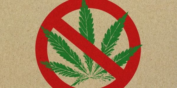 The Marijuana Advertising Double Standard Is Stifling Our Industry