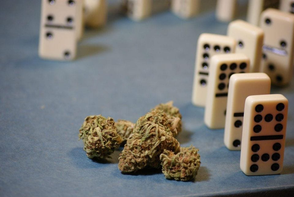 Worldwide Marijuana Conferences Confirm The Business Of Weed Is Officially Legit