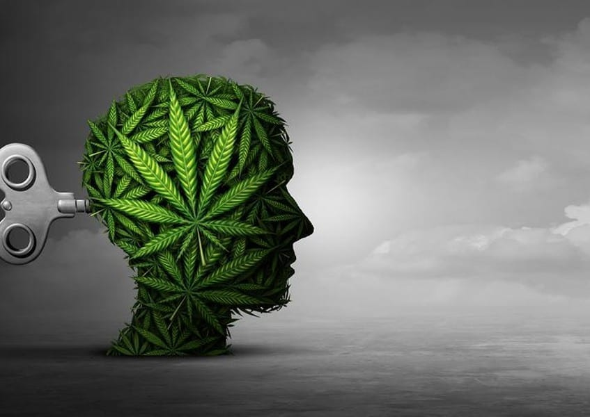 Why Does Cannabis Affect US All Differently?