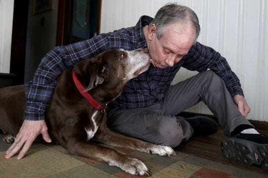 Brad Stottlemyer, 65 of Dearborn Heights with his 11-year-old chocolate lab mix Misty in their home on Thursday, March 7, 2019. Misty has bone cancer in her right front bone joint and the Essential CBD pet drops, a marijuana-based product has helped her not limp as much and become more active. The dog is also on medicine in pill form to help with her bone cancer. (Photo: Eric Seals, Detroit Free Press)