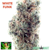 White Funk grown by Devil's Lettuce Sativa