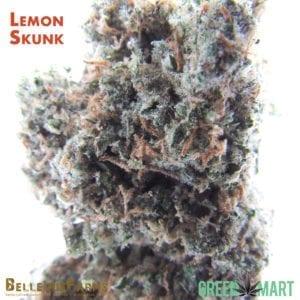 Bellevue Farms - LemonSkunk