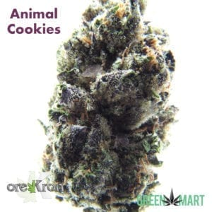 Animal Cookies by Orekron