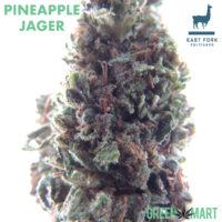 PINEAPPLE JAGER Grown By East Fork Cultivars