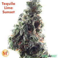 Tequila Lime Sunset By Mother Magnolia Medicinals