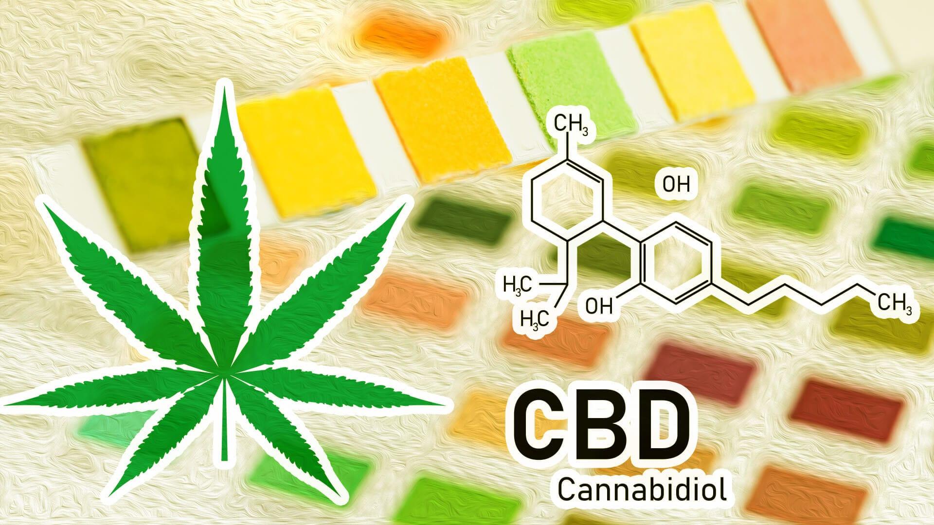 Does CBD Show Up On Drug Tests? Source: Wikileaf