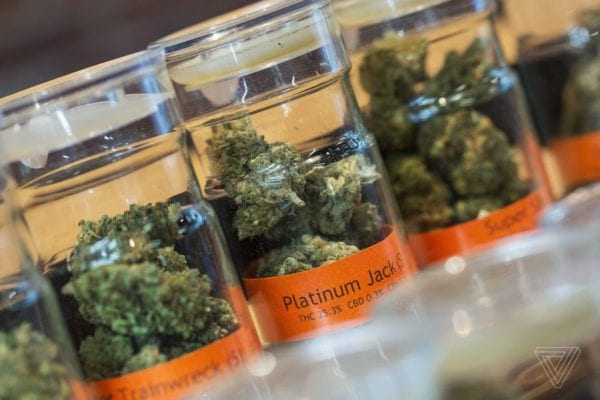 Google bans marijuana delivery companies from selling weed directly through their apps