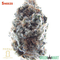 Sneeze by Meraki Gardens