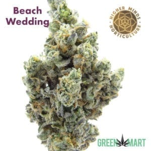 Beach Wedding by Higher Minds Horticulture
