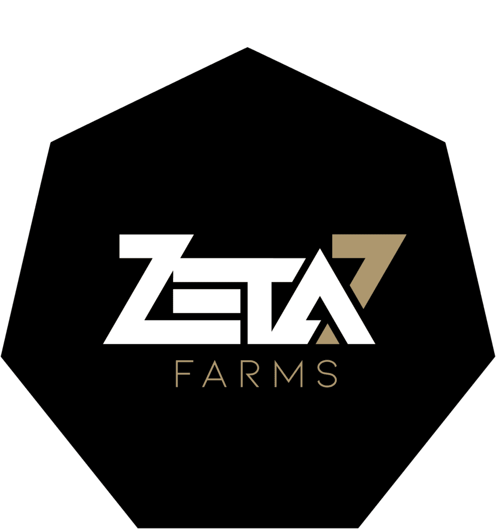 Zeta 7
